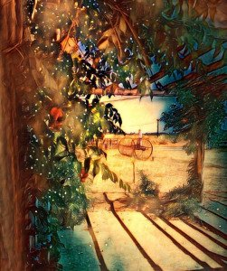 Résidence Magdalena chemin de l'Oasis 17340 Yves